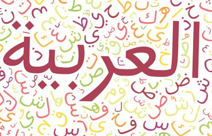 روش صحیح مطالعه درس عربی از دیدگاه استاد احمدی